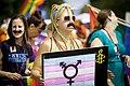 Pride Parade 2015 (20056228688).jpg