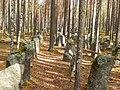 Priozersky District, Leningrad Oblast, Russia - panoramio (31).jpg