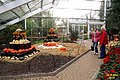 Pumpkin display (SG) (16220496265).jpg
