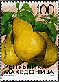 Pyrus communis. Stamp of Macedonia.jpg