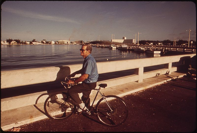 File:RETIRED RESIDENT, FORMERLY A WORKER UP NORTH, PAUSES AT THE MUNICIPAL BOAT DOCKS - NARA - 548531.jpg