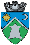 Coat of arms of Sovata