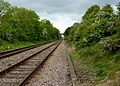 Railway line in a cutting - geograph.org.uk - 1305836.jpg