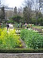 Real Jardín Botánico (Madrid) 05.jpg