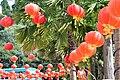 Red Lanterns for Chinese New Year KK 4.jpg