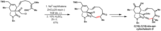 E. Vedejs total synthesis of C(16),C(18)-bis-epi-cytochalasin D uses a late stage Reformatsky reaction to access the natural product