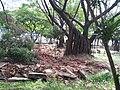 Revitalização da Esplanada Monte Castelo Março 2012. - panoramio.jpg