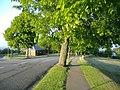 Ridgeway Park, Newport - geograph.org.uk - 423113.jpg