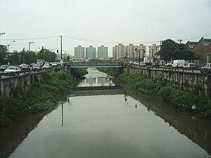 Tamanduateí River - Image: Rio Tamanduateí