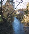 River Glyme in Wootton by Woodstock - geograph.org.uk - 305125.jpg