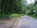 Road along side Ercall Wood - geograph.org.uk - 487981.jpg