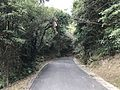 Road for Udo Shrine.jpg
