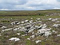 Rocky ground and grouse butts on Uzzles Hill - geograph.org.uk - 506004.jpg