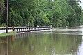 Roman Forest Flooding - 4-18-16 (26514775105).jpg