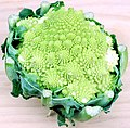 Romanesco Broccoli.jpg