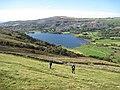 Rough field above Llyn Nantlle Uchaf - geograph.org.uk - 1502456.jpg