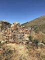 Ruinas de posible posta militar en Incallajta.jpg