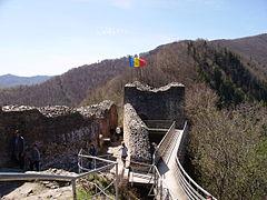 Ruinele Cetatii Poenari Jpg