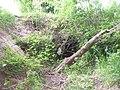 Säckelgraben vor Durchlass A 5.jpg
