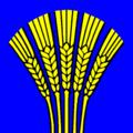 S-chanf-drapeau.png