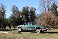 SB VSCC boxwood restoration at Mulberry Hill (15531005893).jpg
