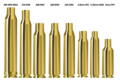 SSA-brass-rifle-cases.png