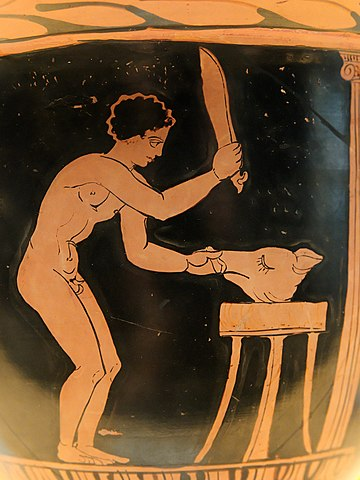 Young man preparing a pig's head after a sacrifice. Vase v. 360-340 BC, National Archaeological Museum of Spain Sacrifice pig Tarporley Painter MAN.jpg