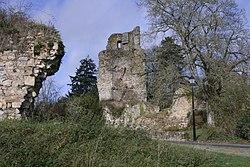 Saint-Aubin-du-Cormier ruins.JPG