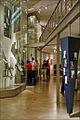 Salle du musée juif (Berlin) (6319666580).jpg