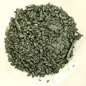 Merimde culture - Grain from Merimde, MET