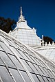 San Francisco Conservatory of Flowers-43.jpg