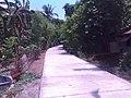Santa Maria and Bocaue area - panoramio (6).jpg