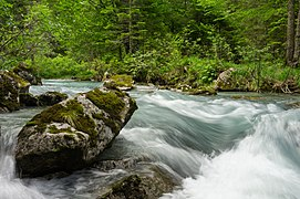 Sarca di Nambrone, flowing water 01, close-up.jpg