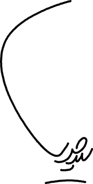 Hassan Khomeini - Image: Sayyed Hassan Khomeini signature