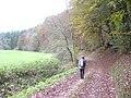 Schalkenbachtal - geo.hlipp.de - 6256.jpg