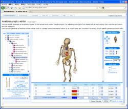 Anatomography screenshot
