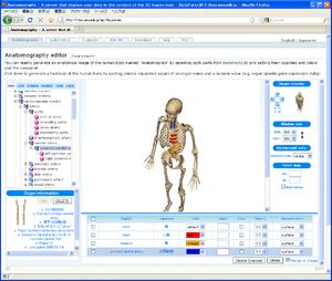 Anatomography - Anatomography screenshot