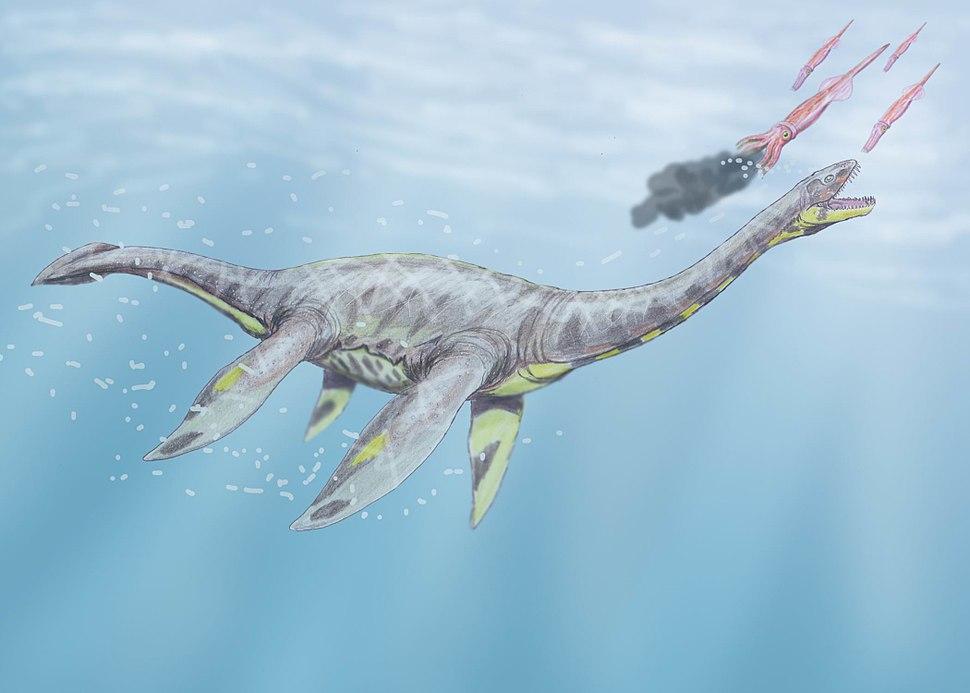 SeeleysaurusDB