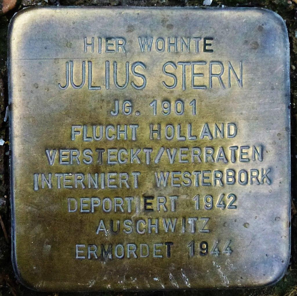 Julius Stern