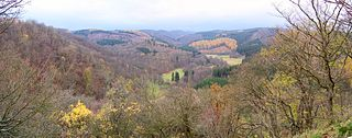 Old Falkenstein Castle castle