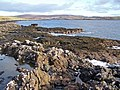 Shore of Loch Caroy - geograph.org.uk - 1586734.jpg