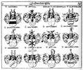 Siebmacher 1701-1705 C191.jpg