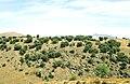 Sierra Norte 1979 02.jpg