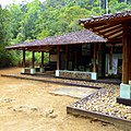 Sinharaja Rain Forest, Sri Lanka - panoramio (5).jpg
