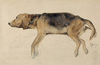 Study of a Dog Lying Down