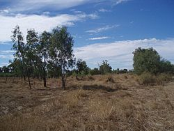 Site of Shearers' Strike Camp (2009), Barcaldine.jpg