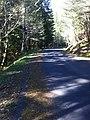 Skamania County, WA, USA - panoramio (2).jpg