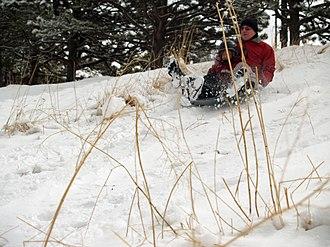 Sledding - A family sledding
