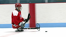 Sledge hockey player.jpg