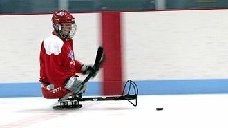 Sledge hockey - A Para ice hockey player handling the puck.